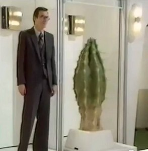 No, really. They did an episode about an evil cactus.